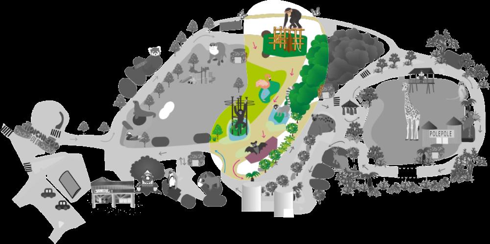 熱帯の森地図